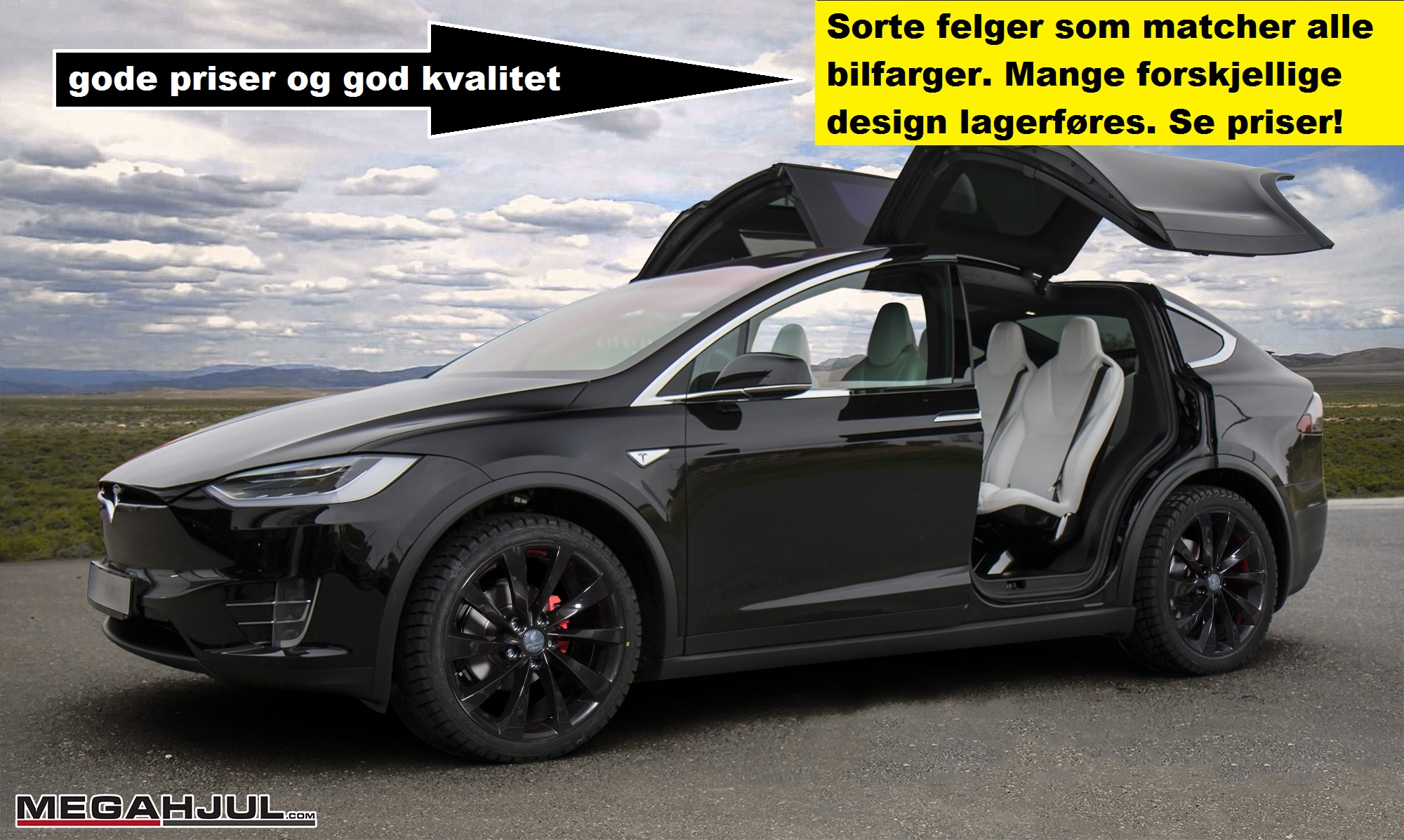Vinterhjul anbefalt til Tesla Model X